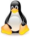 Reiniciar Linux en caso de cuelgue