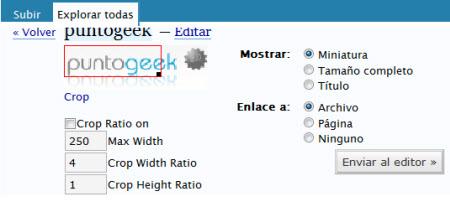 Vivtiger Image Resizer, recorta imágenes desde el editor visual de WordPress