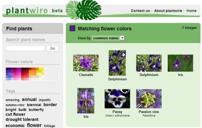Plantwire, buscador de fotos de plantas