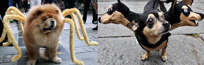 Disfraces de mascotas geek