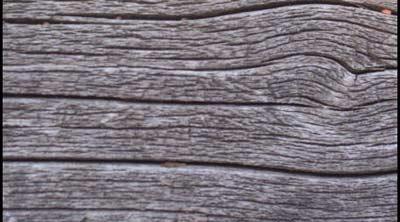 Paquete de texturas de madera