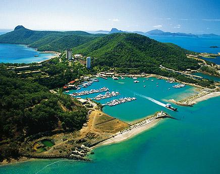 100 mil dólares de sueldo por bloggear desde una isla paradisíaca