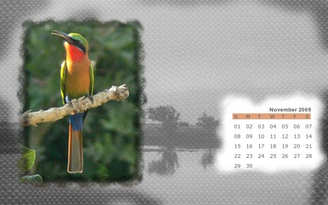 Calendarika, crea un calendario con la foto que quieras 125906860015261452_min