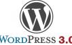 Se retrasa el lanzamiento de WordPress 3.0