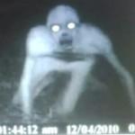 ¿Zombie en Louisiana?