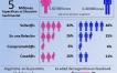 Infografía sobre el uso de Facebook en Argentina