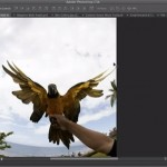 Descargar Photoshop CS6 Beta Gratis