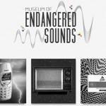 El museo de los sonidos en peligro de extinción
