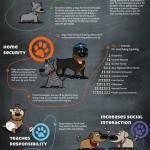38 razones para adoptar un amigo de 4 patas [Infografía]