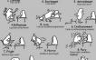 Las 11 etapas de programador